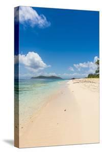 Beautiful white sand beach on Monuriki (Cast Away Island), Mamanuca Islands, Fiji, South Pacific by Michael Runkel