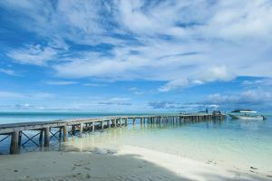 Boat Pier on Carp Island, One of the Rock Islands, Palau, Central Pacific by Michael Runkel