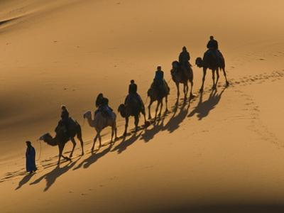 Camel Caravan Riding Through the Sand Dunes of Merzouga, Morocco, North Africa, Africa by Michael Runkel