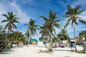Clothes drying in the open sun, Funafuti, Tuvalu, South Pacific by Michael Runkel