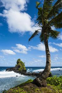 East Coast of Tutuila Island, American Samoa, South Pacific by Michael Runkel