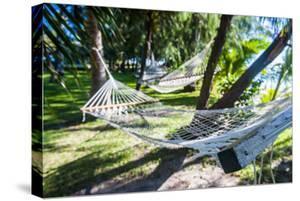 Hammock on the Beach, Nacula Island, Yasawa, Fiji, South Pacific by Michael Runkel