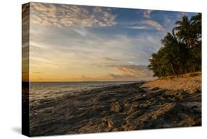 Late Afternoon Light on a Beach on Beachcomber Island, Mamanucas Islands, Fiji, South Pacific by Michael Runkel