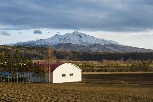 Little farm before a snow capped mountain near the Shiretoko National Park, Hokkaido, Japan, Asia by Michael Runkel