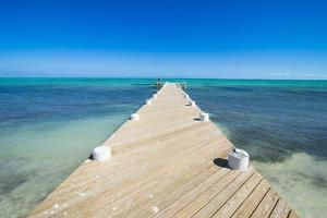 Long wooden pier in the turquoise waters of Providenciales, Turks and Caicos, Caribbean by Michael Runkel