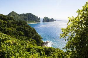 National Park of American Samoa, Tutuila Island, American Samoa, South Pacific by Michael Runkel