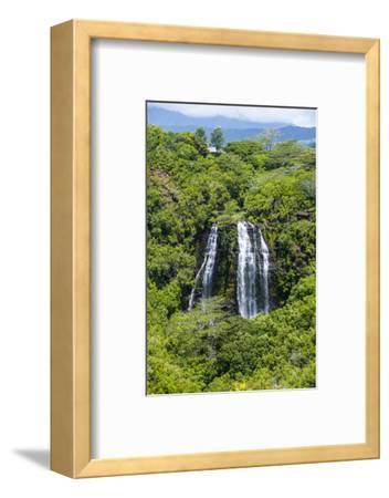 Opaekaa Falls, Kauai, Hawaii, United States of America, Pacific