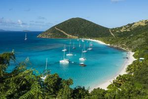 Overlook over White Bay, Jost Van Dyke, British Virgin Islands, West Indies, Caribbean, Central Ame by Michael Runkel