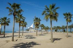 Palm fringed Marina beach, Kuwait City, Kuwait, Middle East by Michael Runkel