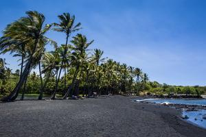 Punaluu Black Sand Beach on Big Island, Hawaii, United States of America, Pacific by Michael Runkel