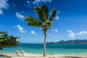 St. Martin, French territory, West Indies, Caribbean, Central America by Michael Runkel