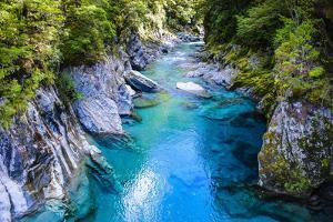The Stunning Blue Pools, Haast Pass, South Island, New Zealand, Pacific by Michael Runkel