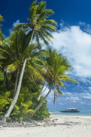 Traditional wood carved boat in the Aitutaki lagoon, Rarotonga and the Cook Islands, South Pacific,
