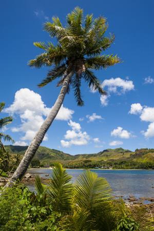 Umatac Bay, Guam, Us Territory, Central Pacific by Michael Runkel