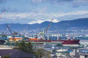 View over Hakodate from the Motomachi district, Hakodate, Hokkaido, Japan, Asia by Michael Runkel