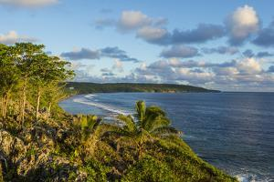 View over the coastline of Niue, South Pacific, Pacific by Michael Runkel
