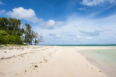White sand and turquoise water at Laura (Lowrah) beach, Majuro atoll, Majuro, Marshall Islands, Sou by Michael Runkel