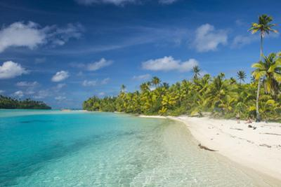 White sand bank in the turquoise waters of the Aitutaki lagoon, Rarotonga and the Cook Islands, Sou by Michael Runkel