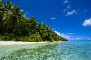 White Sand Beach in Turquoise Water in the Ant Atoll, Pohnpei, Micronesia by Michael Runkel