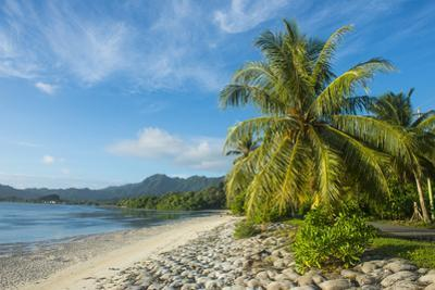 White sand beach, Kosrae, Federated States of Micronesia, South Pacific by Michael Runkel