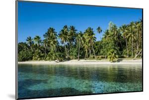 White Sand Beach, Nanuya Lailai Island, Blue Lagoon, Yasawa, Fiji, South Pacific by Michael Runkel