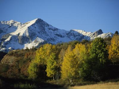 Autumnal View of Aspen Trees and the Rocky Mountains by Michael S^ Lewis