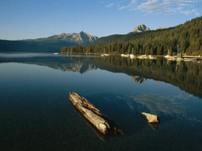 Calm Water with Submerged Log on a Mountain Lake by Michael S^ Lewis