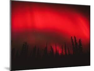 Red Aurora Borealis, Alaska by Michael S. Quinton