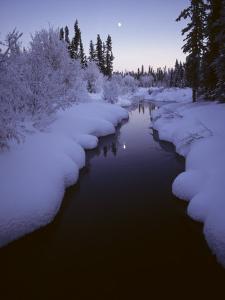 Rufus Creek, Headwaters, Wrangell, St Elias Np, Alaska by Michael S. Quinton