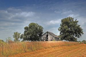 Barn and Field, Missouri, USA by Michael Scheufler