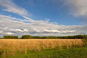 Desoto NWR, Nebraska, USA by Michael Scheufler