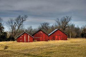 Three Barns, Kansas, USA by Michael Scheufler