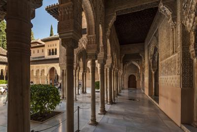 Court of the Lions, Alhambra, Granada, Province of Granada, Andalusia, Spain by Michael Snell