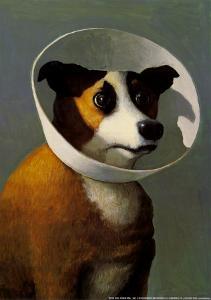 Filmhound by Michael Sowa