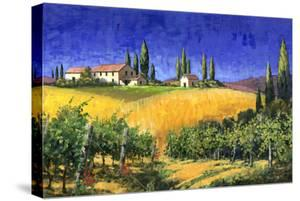Tuscan Evening by Michael Swanson