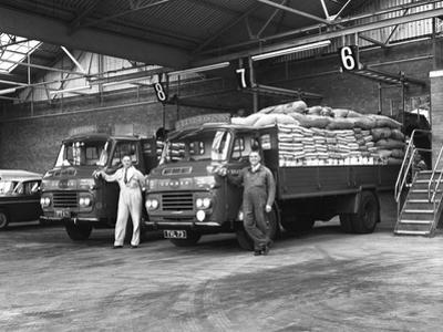 Commer Lorries at Spillers Foods Ltd, Gainsborough, Lincolnshire, 1962 by Michael Walters