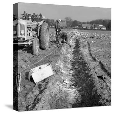 Contractors Setting Explosives in a Trench in Firbeck, Near Rotherham, 1962