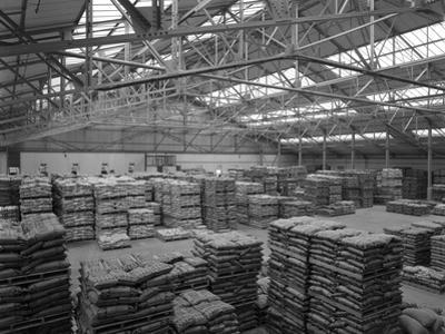 Warehouse at Spillers Animal Foods, Gainsborough, Lincolnshire, 1961 by Michael Walters