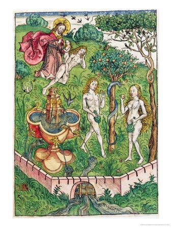 The Creation and the Temptation of Adam and Eve, c.1491