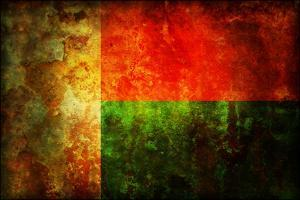 Flag Of Madagascar by michal812