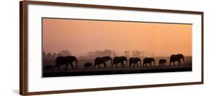 Troupeau d'Elephants by Michel & Christine Denis-Huot