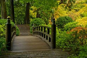 Autumn Color, Portland Japanese Garden, Portland, Oregon, USA by Michel Hersen
