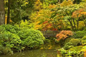 Autumn, Moon Bridge, Portland, Oregon, Usa by Michel Hersen