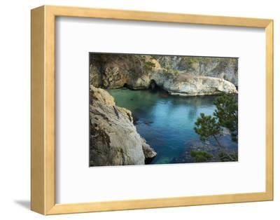 China Cove, Point Lobos Natural Reserve, Carmel, California, USA