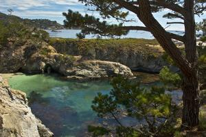 China Cove, Point Lobos State Reserve, Carmel, California, USA by Michel Hersen