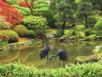 Pond, Strolling Garden, Portland Japanese Garden, Oregon, Usa-Michel Hersen-Photographic Print