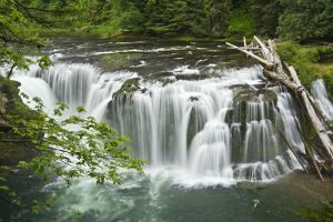 Lower Lewis Falls, Lewis River, Cougar, Washington, Usa by Michel Hersen