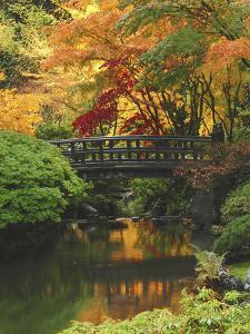 Moon Bridge in Autumn: Portland Japanese Garden, Portland, Oregon, USA by Michel Hersen