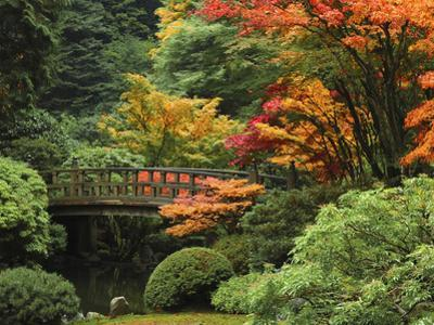 Moon Bridge in Autumn: Portland Japanese Garden, Portland, Oregon, USA