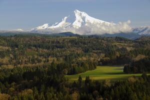 Mount Hood, Jonsrud Viewpoint, Sandy, Oregon, USA by Michel Hersen